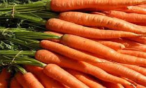 Carrot Juice Has Amazing Medical Benefit
